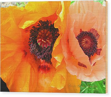 Wood Print featuring the photograph Poppy Power by Brooks Garten Hauschild