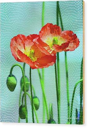 Poppy Series - Quite Wood Print by Moon Stumpp