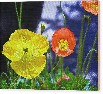 Poppy Series - Soaking Up Sunbeams Wood Print by Moon Stumpp