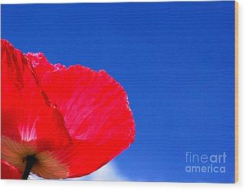 Poppy Sky Wood Print by Stephen Melia