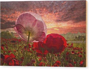 Poppy Sunrise Wood Print by Debra and Dave Vanderlaan