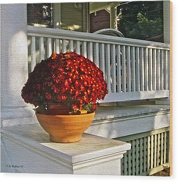 Porch Beauty Wood Print by Brian Wallace