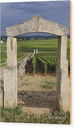 Portal  Of Vineyard.burgundy. France Wood Print by Bernard Jaubert