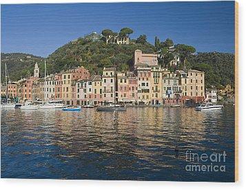 Wood Print featuring the photograph Portofino by Antonio Scarpi