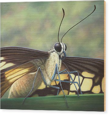 Portrait Of A Butterfly Wood Print by James W Johnson