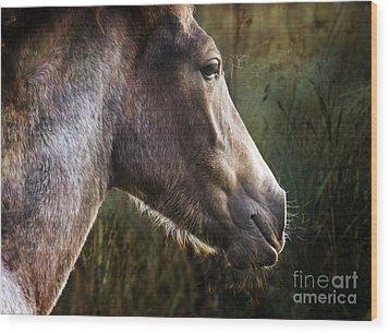 Portrait Of A Dreaming Horse Wood Print by Angel Ciesniarska