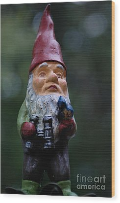 Portrait Of A Garden Gnome Wood Print by Amy Cicconi