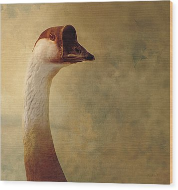 Portrait Of A Goose Wood Print by Fran Riley
