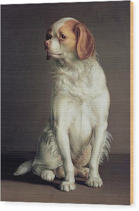 Portrait Of A King Charles Spaniel Wood Print by Louis Leopold Boilly