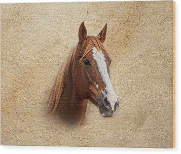 Portrait Of A Mare Print Wood Print