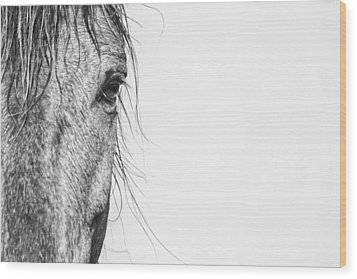 Portrait Of A Wild Mustang Wood Print