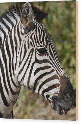 Portrait Of A Zebra Wood Print by Maria Urso