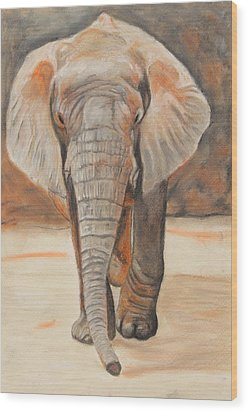 Portrait Of An Elephant Wood Print