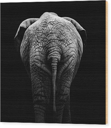 Portrait Of Elephant In Black And White II Wood Print