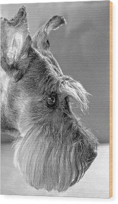 Portrait Of Gretl Wood Print by  Andrea Lazar