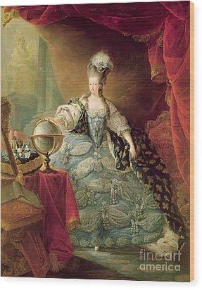 Portrait Of Marie Antoinette Queen Of France Wood Print by Jean-Baptise Andre Gautier DAgoty