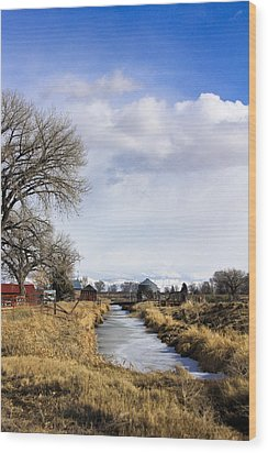Portrait Of Rural Colorado Wood Print
