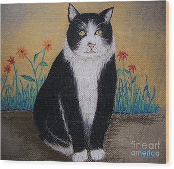 Portrait Of Teddy The Ninja Cat Wood Print by Reb Frost