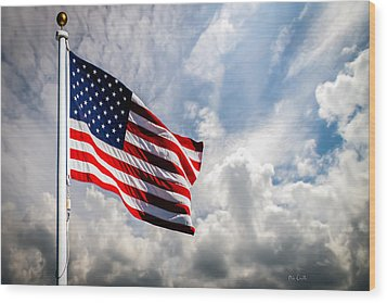 Portrait Of The United States Of America Flag Wood Print by Bob Orsillo