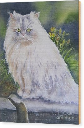Portrait Of White Cat Wood Print by Patricia Pushaw