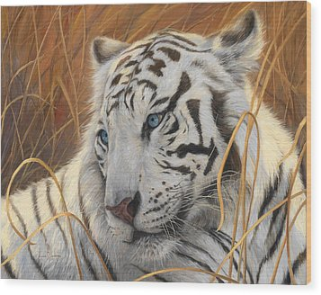 Portrait White Tiger 1 Wood Print by Lucie Bilodeau