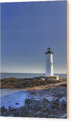 Portsmouth And The Whaleback Wood Print by Joann Vitali