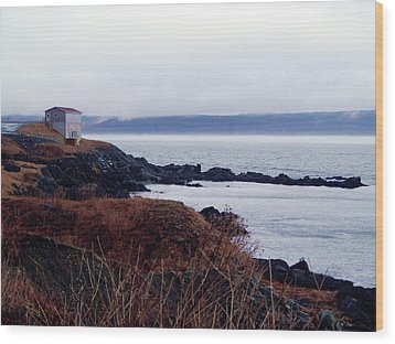 Portugal Cove Wood Print by Zinvolle Art