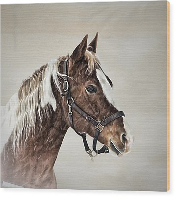 Posed Wood Print by Gary Smith
