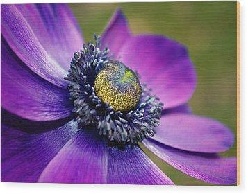 Positively Purple Wood Print