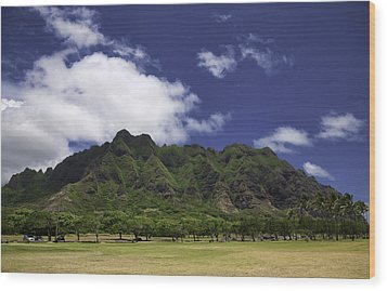 Postcard From Oahu Wood Print by Joanna Madloch