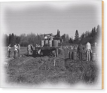 Potato Harvest 3 Wood Print by Gene Cyr