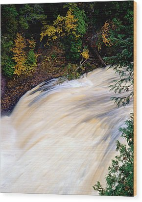 Potawatami Falls Wood Print by Tim Hawkins
