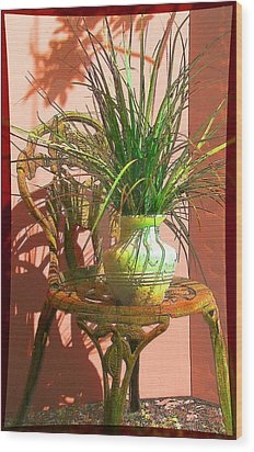 Potted Plant In Chair No 3 Wood Print by Ginny Schmidt