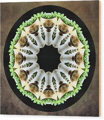 Wood Print featuring the photograph Potted Plant Kaleidoscope by Betty Denise