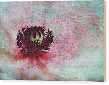 Power Of Poppy Wood Print by Claudia Moeckel
