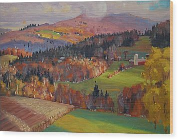 Pownel Vermont Wood Print by Len Stomski