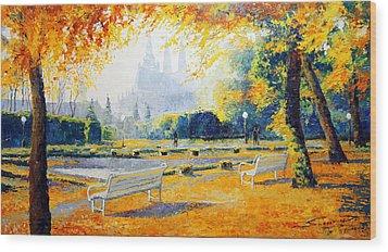 Prague Autumn In The Kralovska Zahrada Wood Print by Yuriy Shevchuk