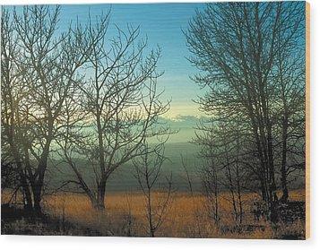 Prairie Autumn 2 Wood Print by Terry Reynoldson