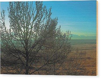 Prairie Autumn 7 Wood Print by Terry Reynoldson