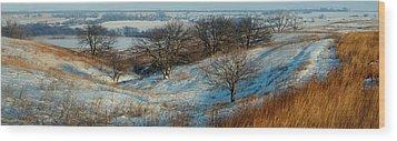 Prairie Winter Wood Print by Bruce Morrison