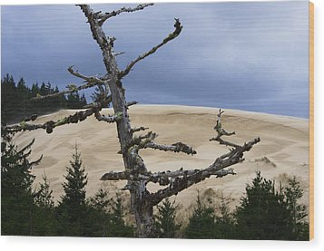Wood Print featuring the photograph Pre Storm by Adria Trail