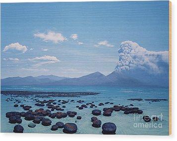 Precambrian Stromatolites Wood Print by Chase Studio