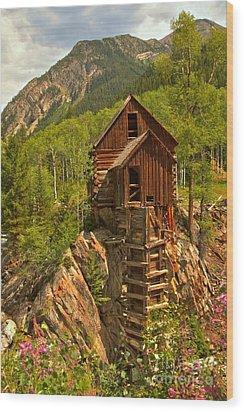 Precarious Perch Wood Print by Adam Jewell