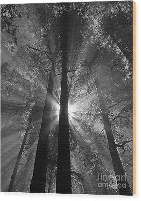 Presence Wood Print