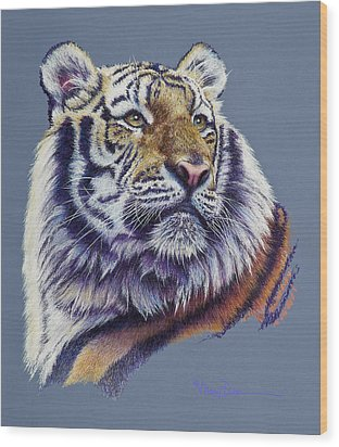 Pretty Boy Siberian Tiger Wood Print