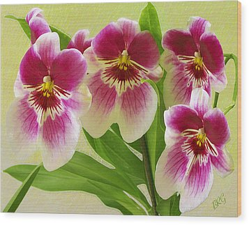 Pretty Faces - Orchid Wood Print by Ben and Raisa Gertsberg