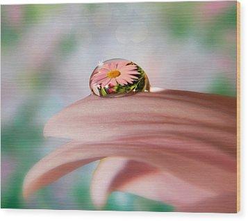 Pretty Flower Drop Wood Print