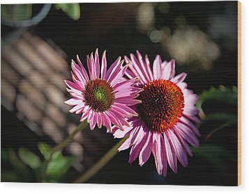 Pretty Flowers Wood Print by Joe Fernandez