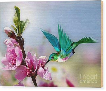 Pretty Hummingbird Wood Print