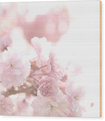 Pretty In Pink - The Confetti Wood Print